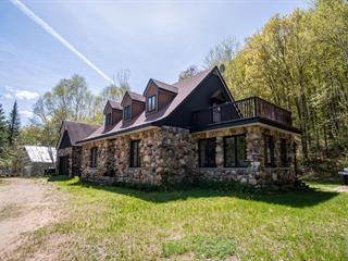 Maison à vendre à Saint-Donat (Lanaudière), Lanaudière, 1287, Chemin  Ouareau Nord, 9854747 - Centris.ca