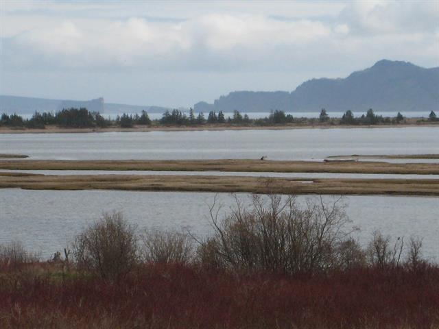 Terrain à vendre à Percé, Gaspésie/Îles-de-la-Madeleine, Route  132 Est, 18063900 - Centris.ca