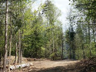Terrain à vendre à Morin-Heights, Laurentides, Chemin  Kirkpatrick, 23969840 - Centris.ca