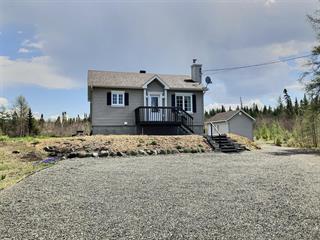 Maison à vendre à Saint-Joseph-de-Coleraine, Chaudière-Appalaches, 215, Chemin du Lac-Caribou, 25642314 - Centris.ca