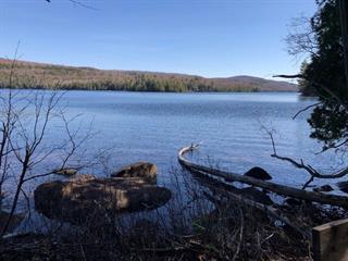 Terrain à vendre à Barkmere, Laurentides, 8131B, Chemin du Lac-des-Écorces, 23704267 - Centris.ca