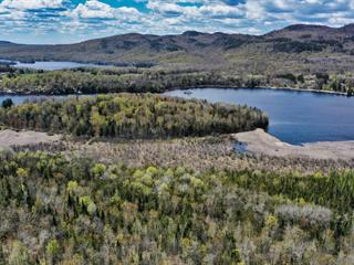 Terre à vendre à Notre-Dame-du-Laus, Laurentides, Chemin des Géraniums, 26969552 - Centris.ca