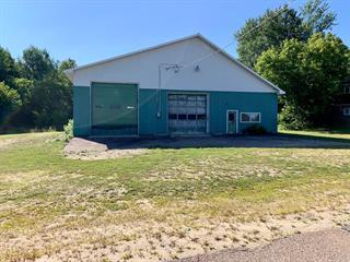 Bâtisse commerciale à vendre à Otter Lake, Outaouais, 20, Croissant  Vadneau, 20553496 - Centris.ca
