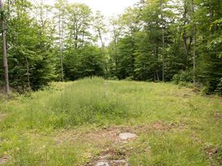 Terrain à vendre à Val-des-Monts, Outaouais, 641, Chemin  Blackburn, 22207108 - Centris.ca