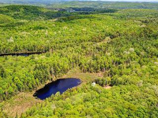 Cottage for sale in Ripon, Outaouais, 37, Chemin des Écureuils, 10285389 - Centris.ca