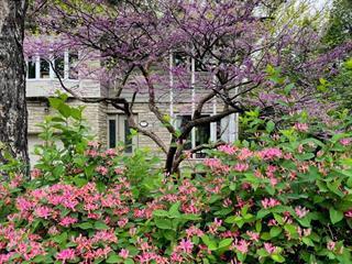 House for sale in Mont-Royal, Montréal (Island), 730, boulevard  Laird, 9605627 - Centris.ca