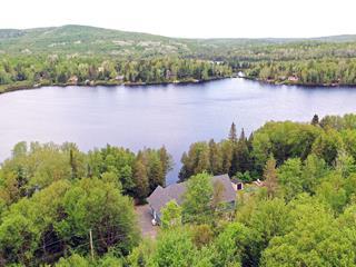 House for sale in Lac-Saguay, Laurentides, 25, Chemin  Baumann, 11221129 - Centris.ca