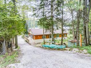 Chalet à vendre à Gracefield, Outaouais, 45, Chemin  Patry, 28175896 - Centris.ca