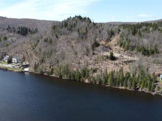 Lot for sale in Wentworth-Nord, Laurentides, Chemin  Lisbourg, 15986814 - Centris.ca