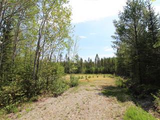 Terrain à vendre à Weedon, Estrie, Chemin des Feuillages, 15716432 - Centris.ca