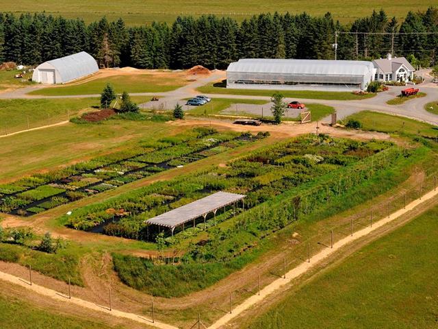 Fermette à vendre à La Conception, Laurentides, 3165Z, Route des Tulipes, 18720567 - Centris.ca
