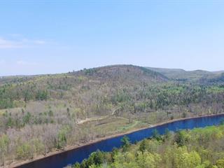 Lot for sale in Mansfield-et-Pontefract, Outaouais, Chemin du Dépôt-Davidson, 23531192 - Centris.ca