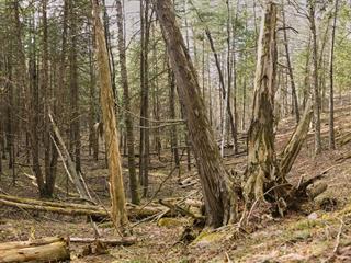Terrain à vendre à Harrington, Laurentides, Chemin du Gros-Rocher, 27491285 - Centris.ca