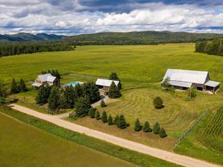 Maison à vendre à Arundel, Laurentides, 21, Chemin  Deer Haven, 13714757 - Centris.ca