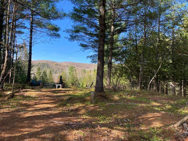 Terrain à vendre à Chertsey, Lanaudière, Carré  André-Boucher, 22648488 - Centris.ca