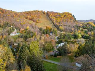 House for sale in Saint-Sauveur, Laurentides, 10, Chemin de la Rivière-à-Simon, 27418395 - Centris.ca