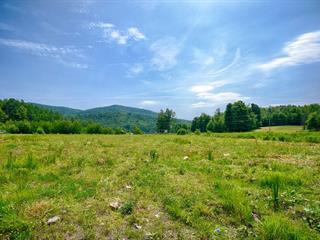 Terrain à vendre à Bromont, Montérégie, Chemin du Lac-Gale, 26505867 - Centris.ca