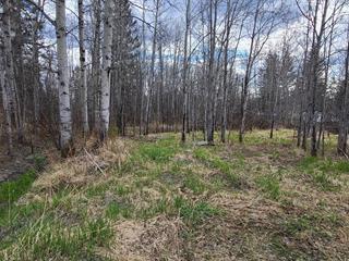 Terrain à vendre à Rouyn-Noranda, Abitibi-Témiscamingue, Rue  Marie-Rollet, 22642416 - Centris.ca