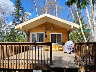 Cottage for sale in Rouyn-Noranda, Abitibi-Témiscamingue, 1124, Chemin de la Baie-Solitaire, 18093666 - Centris.ca