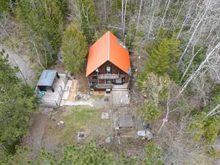 Cottage for sale in Chertsey, Lanaudière, 423, Avenue  Lafond, 16180951 - Centris.ca
