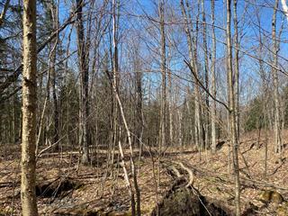 Lot for sale in Boileau, Outaouais, Chemin des Pionniers, 14065340 - Centris.ca