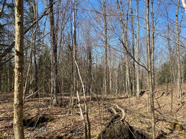 Terrain à vendre à Boileau, Outaouais, Chemin des Pionniers, 14065340 - Centris.ca