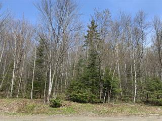Lot for sale in Inverness, Centre-du-Québec, Z, Chemin  Bellevue, 28985782 - Centris.ca