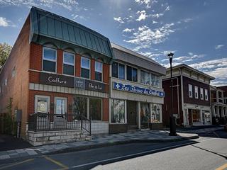 Duplex à vendre à Saint-Jean-sur-Richelieu, Montérégie, 604, 1re Rue, 11306752 - Centris.ca