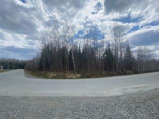 Terrain à vendre à Val-d'Or, Abitibi-Témiscamingue, Rue  Lejeune, 25739500 - Centris.ca