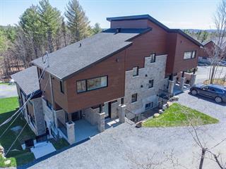 Condo à vendre à Orford, Estrie, 1106, Chemin de la Montagne, 21063592 - Centris.ca