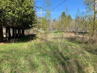 Lot for sale in Lac-Sainte-Marie, Outaouais, Chemin  Lemens, 16469417 - Centris.ca