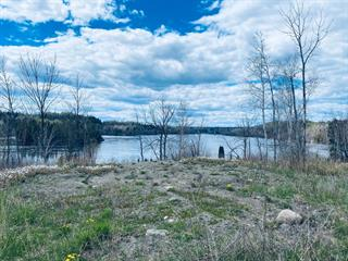 Terrain à vendre à Alma, Saguenay/Lac-Saint-Jean, 3, Chemin du Pic, 28068542 - Centris.ca