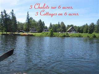 House for sale in Otter Lake, Outaouais, 60, Route  303, 22349274 - Centris.ca