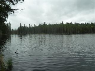 Land for sale in Low, Outaouais, Route  105, 17208961 - Centris.ca
