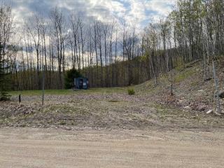 Terrain à vendre à Saint-Gabriel-de-Brandon, Lanaudière, Rue  Clément, 26318341 - Centris.ca