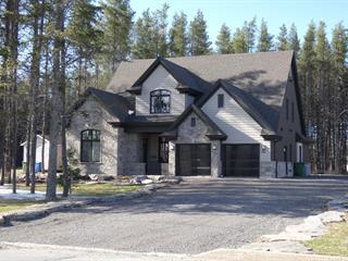 Maison à vendre à La Sarre, Abitibi-Témiscamingue, 212, 12e Avenue Est, 10985611 - Centris.ca