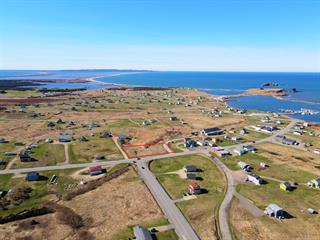 Lot for sale in Les Îles-de-la-Madeleine, Gaspésie/Îles-de-la-Madeleine, Chemin de l'Étang-du-Nord, 21939083 - Centris.ca