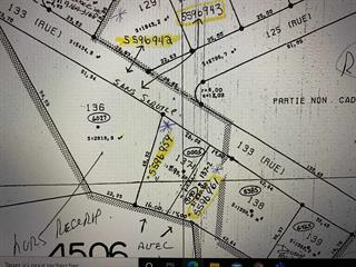 Lot for sale in Côte-Nord-du-Golfe-du-Saint-Laurent, Côte-Nord, La Romaine, 28978012 - Centris.ca