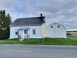 Maison à vendre à Sainte-Christine, Montérégie, 399, 1er Rang Est, 19940689 - Centris.ca