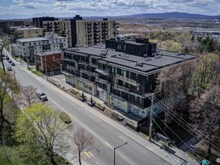 Loft / Studio for sale in Québec (Sainte-Foy/Sillery/Cap-Rouge), Capitale-Nationale, 2830, Chemin  Sainte-Foy, apt. 204, 20898276 - Centris.ca