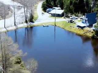 Chalet à vendre à Saint-Côme/Linière, Chaudière-Appalaches, 255, Chemin des Lacs-Bélanger, 11647106 - Centris.ca