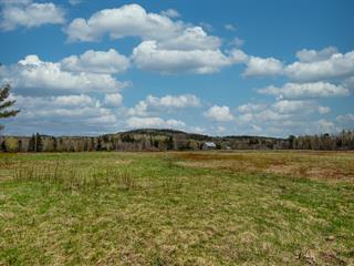 Terrain à vendre à Mandeville, Lanaudière, Rang de la Rivière, 21283739 - Centris.ca