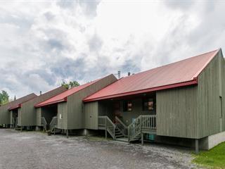 Condominium house for sale in Stoneham-et-Tewkesbury, Capitale-Nationale, 26, Chemin des Adirondacks, 15555752 - Centris.ca