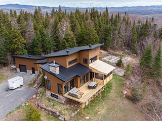 Maison à vendre à Sainte-Agathe-des-Monts, Laurentides, 2741, Chemin  Brunet, 26220589 - Centris.ca