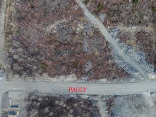 Terrain à vendre à Rouyn-Noranda, Abitibi-Témiscamingue, Rue  Pauly, 15300777 - Centris.ca