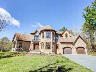 Maison à vendre à Gatineau (Gatineau), Outaouais, 501, Montée  Saint-Amour, 27523440 - Centris.ca