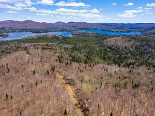 Land for sale in Lac-Supérieur, Laurentides, Montée  Brien, 28086885 - Centris.ca