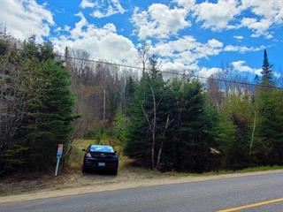 Terrain à vendre à Rivière-Rouge, Laurentides, 1287Z, Montée du Lac-Castor, 25905609 - Centris.ca