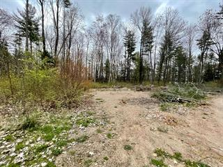 Terrain à vendre à L'Isle-aux-Allumettes, Outaouais, Chemin  Airport, 13468231 - Centris.ca