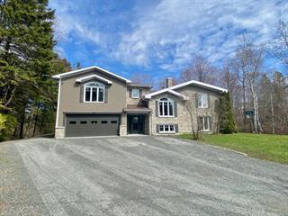 Maison à vendre à Rimouski, Bas-Saint-Laurent, 116, Rue  Hubert-Gagnon, 28695011 - Centris.ca